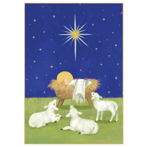 Baby with Lambs Christmas Cards