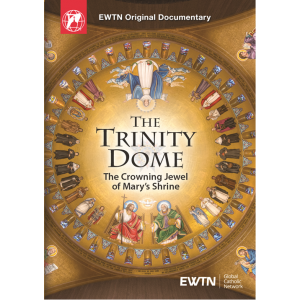 The Trinity Dome DVD